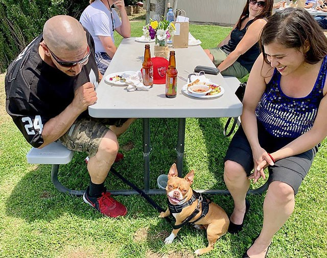 Pinot for Paws raises funds for local animal rescue group
