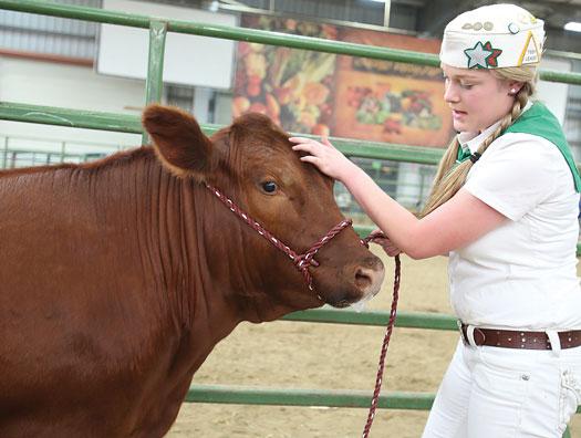 Salinas Valley Fair set for May 18-21