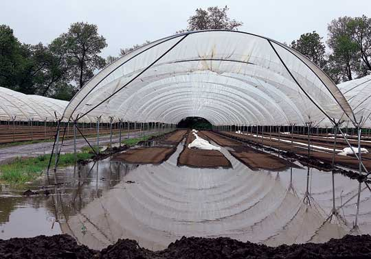 From dry to drenched — How local farmers deal with drastically changing conditions